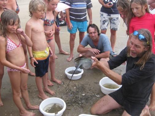 camping_de_lakens_entertainment_activities_sea_korren_childeren